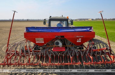 Фото: Flax planting campaign nearly over in Belarus